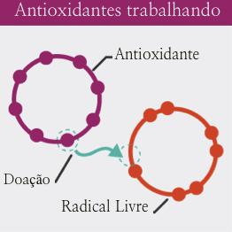 O que são os antioxidantes: Antioxidantes Trabalhando