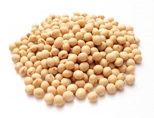 Feijão de soja orgânico: Informação Nutricional