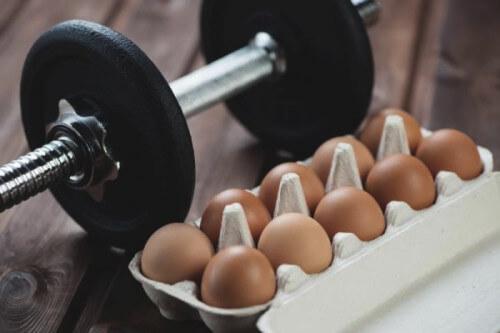 Fontes de Proteína: Ovos