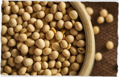 Proteína vegetal: Informação Nutricional