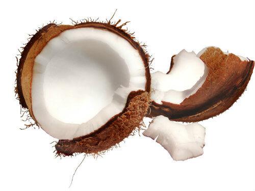 Coco da Baía (verde ou seco): Informação Nutricional