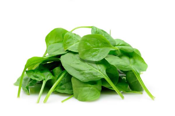 Espinafre cozido: Informação Nutricional