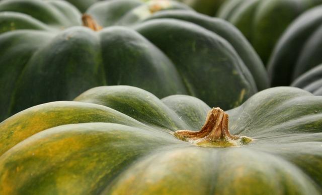 Abóbora Ensopada: Informação Nutricional