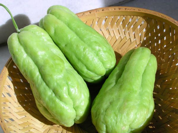 Sopa de Chuchu: Informação Nutricional