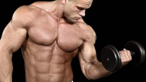 Os músculos do seu corpo!