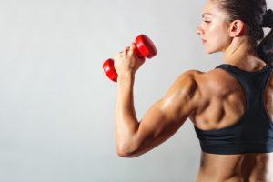 O Esporte como Atividade Física: Musculação