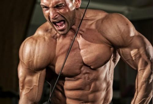 O que fazer para deixar o braço forte e grande?