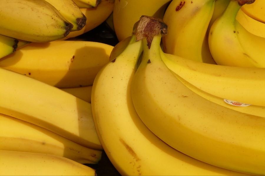 Banana frita (ouro, prata, d'água, da terra, etc) informação nutricional