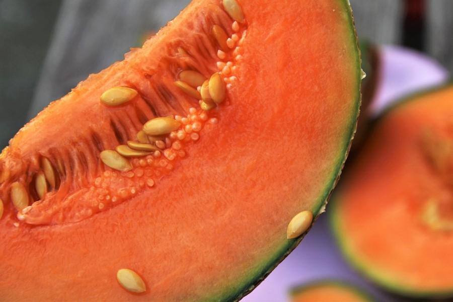 Melão informação nutricional